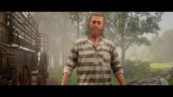 red dead online impressions review