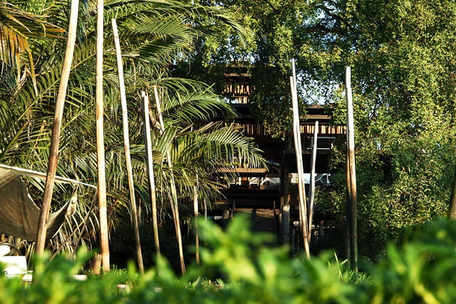 the bangkok tree house hotel lets guests sleep under stars resort 005