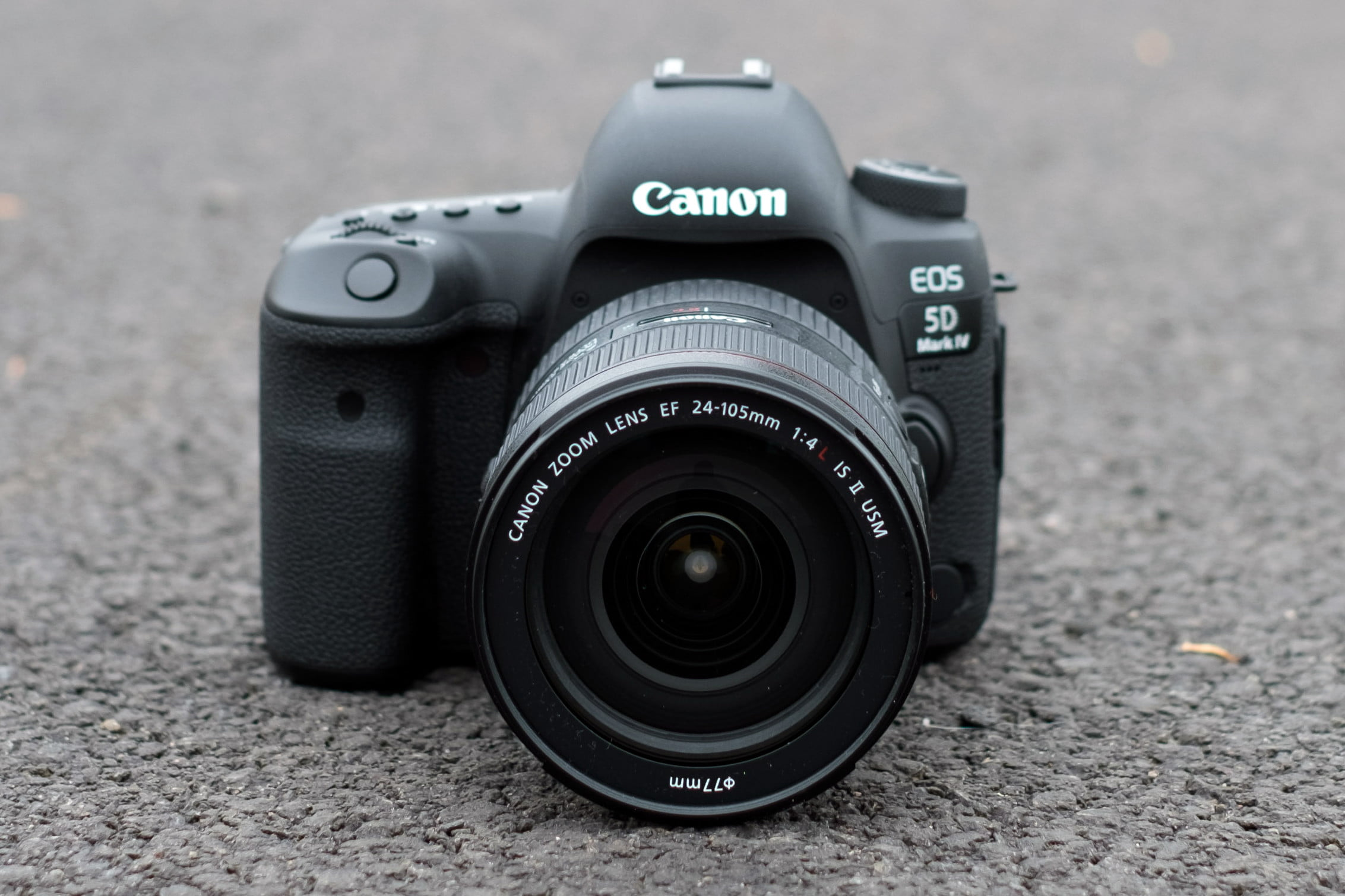 The Best Canon Cameras for 2019 | Digital Trends