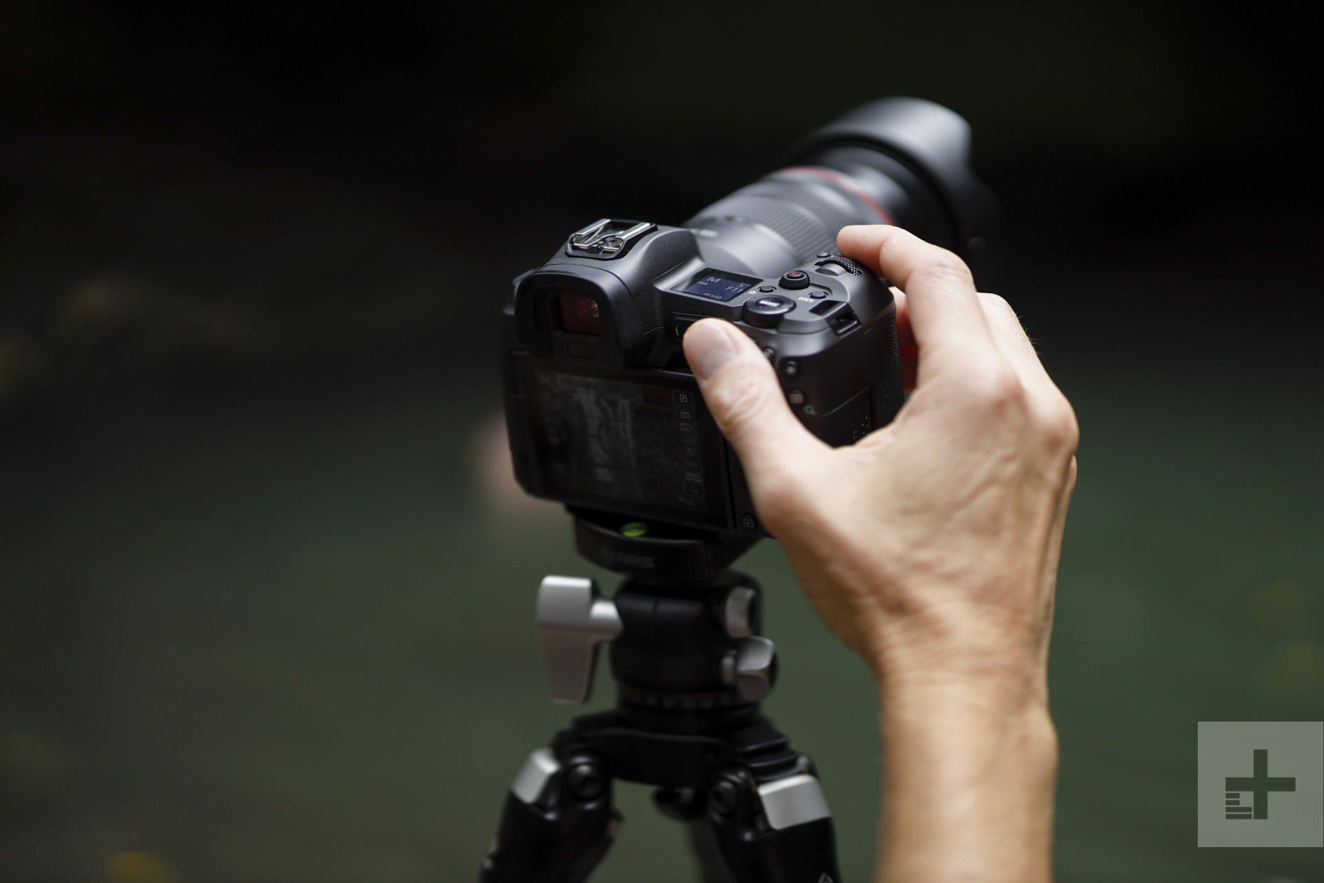 What is a Full-Frame Camera, and Do You Really Need One? | Digital