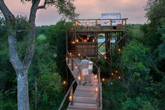retreat from society and relax in these idyllic cabins around the world lion sands game reserve 10