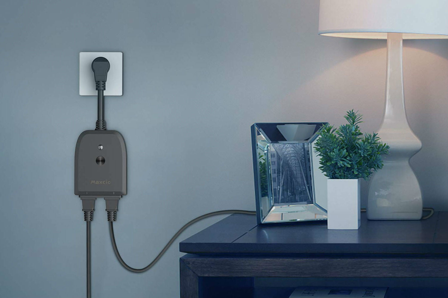 What are smart plugs?