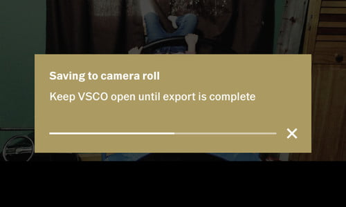 VSCO X Review | For Film Filters That Don't Feel Fake, X