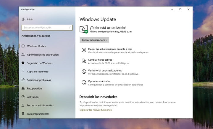 Windows Update not working after May 2019 Update? Here's how