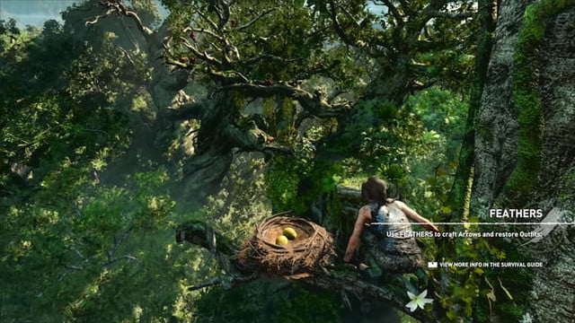revision shadow of the tomb raider review 29413 700x394 c