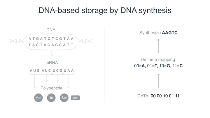 How Catalog synthesizes storage to DNA