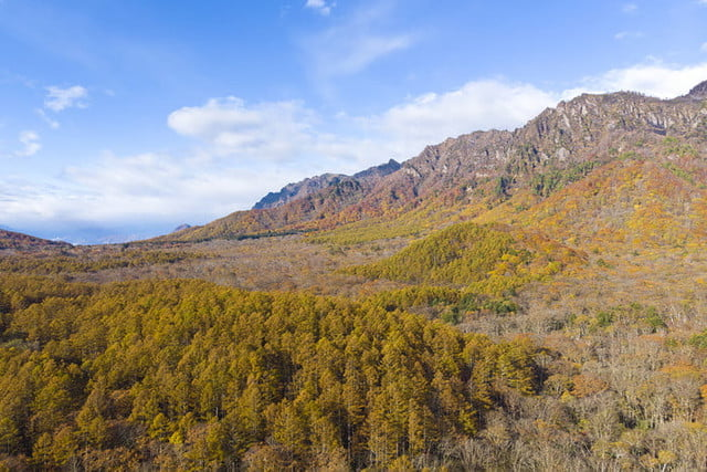 best drone photos view of mt togakushi in autumn