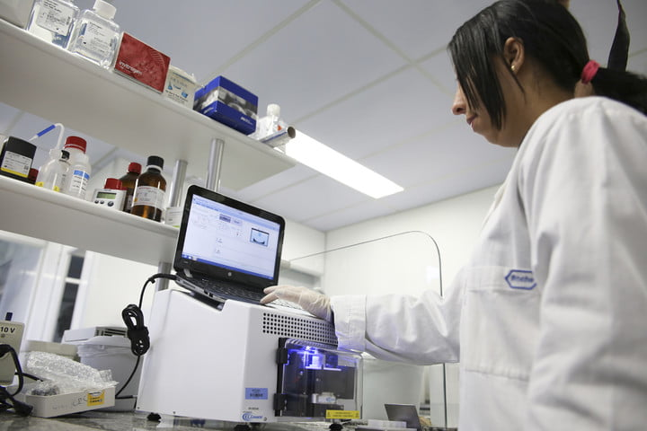 the earth biogenome project wants to sequence all life on sequencing genome brazillian lab