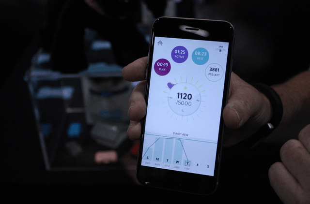 the fitbark monitors health of your dog and more activty tracker 5