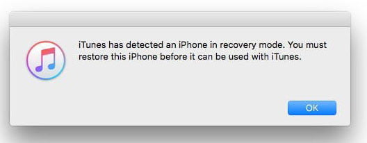 Iphone  Recovery Mode Without Home Button
