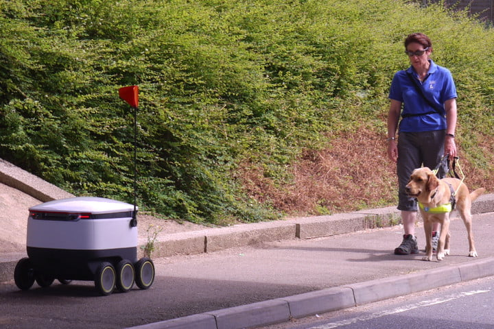 robot delivery service guide dogs pic no 6