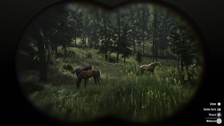 Red dead redemption 2 white horse